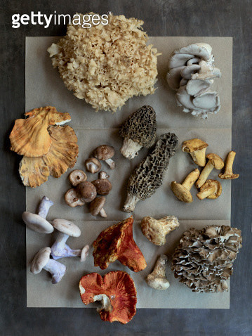 Assorted Exotic Mushrooms - gettyimageskorea