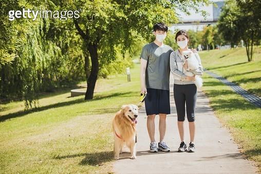 미세먼지 마스크를 쓰고 반려견을 산책시키는 커플 - gettyimageskorea