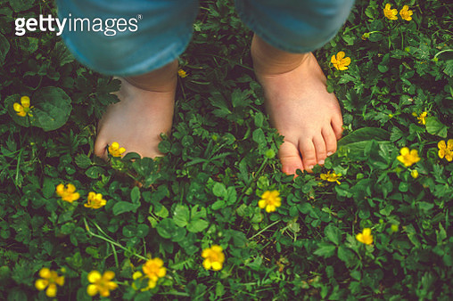 Child's feet on the green grass - gettyimageskorea