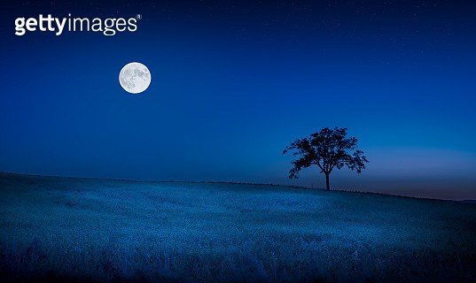 Moon over a meadow - gettyimageskorea