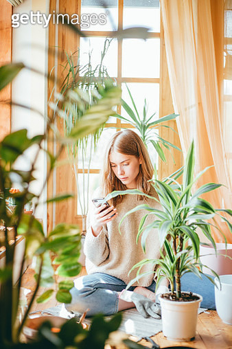 Young woman taking a look at her smartphone while planting. - gettyimageskorea
