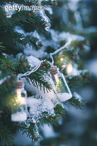 Illuminated Christmas tree at cold winter evening - gettyimageskorea