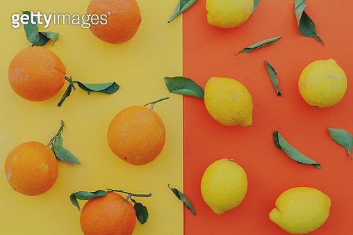flat lay organic oranges  and lemons in a orange background - gettyimageskorea