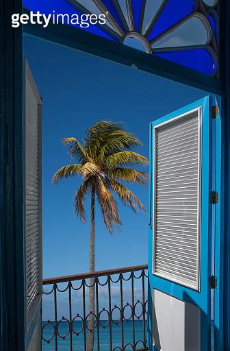Balcony doors overlooking palm tree and ocean - gettyimageskorea