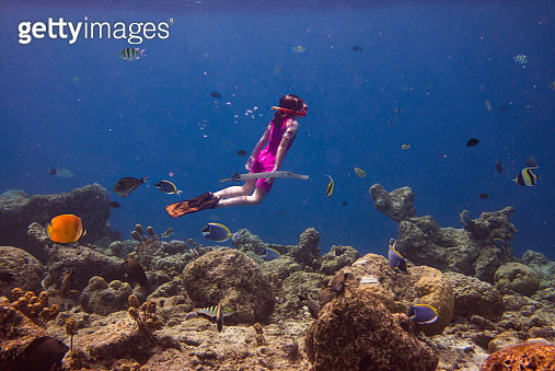 Little girl diving in a coral reef - gettyimageskorea