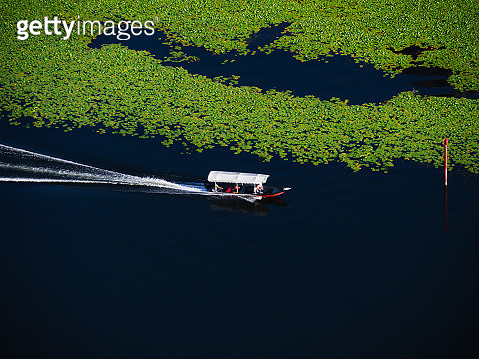Summer water landscape of Skadar Lake National Park of Montenegro - gettyimageskorea