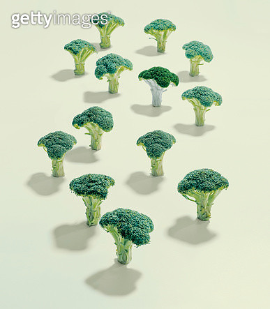 A group of broccoli - gettyimageskorea