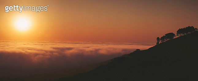 Spectacular sunset panoramic above the clouds with tree silhouette - gettyimageskorea