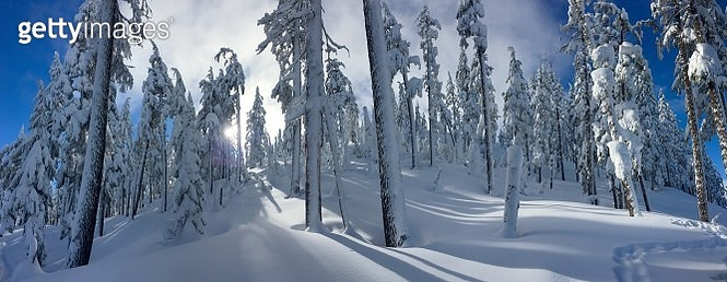 Panoramic View Of Snow Covered Landscape - gettyimageskorea