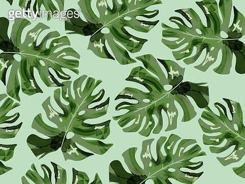 illustration of branches of tree tropical background - gettyimageskorea