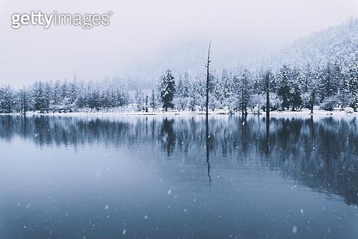 lake in winter - gettyimageskorea