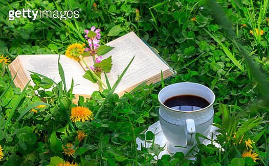 Open Book And A Cup Of Hot Coffee On A Green Meadow In The Summer Or Spring Morning - gettyimageskorea