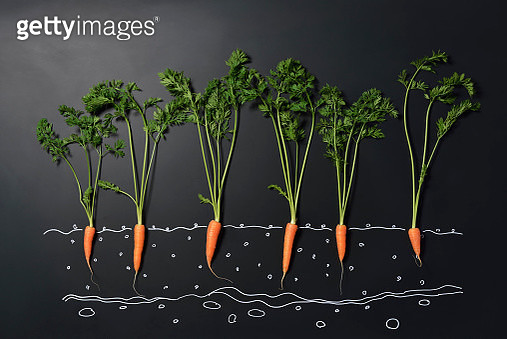 Carrot and blackboard - gettyimageskorea