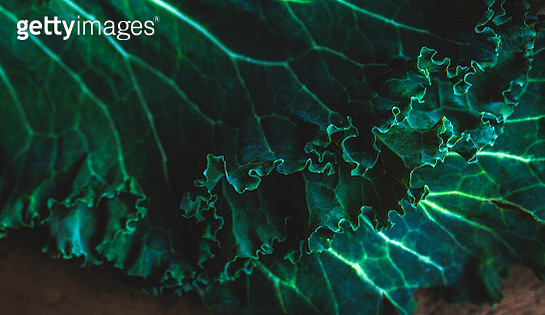 Kale Leaves Close Up - gettyimageskorea