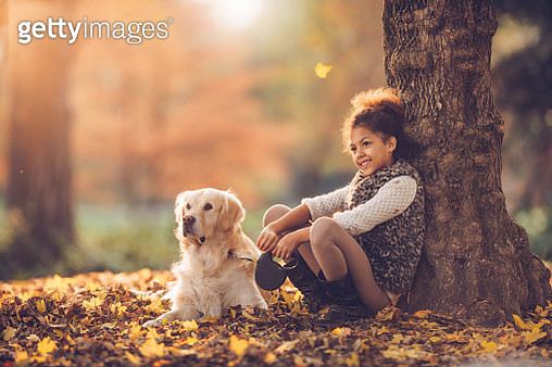 Happy African American girl relaxing with her retriever in autumn day outdoors. - gettyimageskorea
