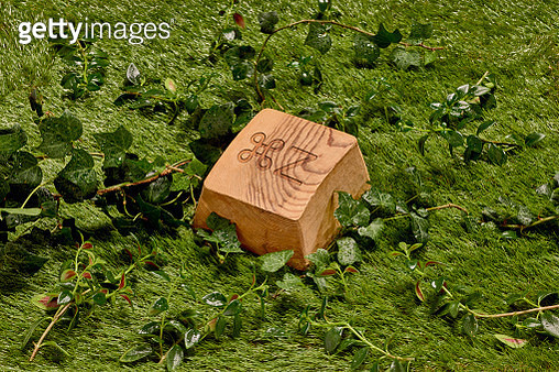 A wooden keyboard key reading Ctrol Z / Command Z over grass and vegetation - gettyimageskorea