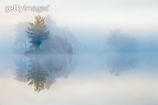 Moody morning in the forest. Morning mist are covering trees on a small island. The lake is called Vrangla, and the forest is called Drammensmarka. - gettyimageskorea