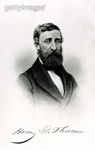 Henry David Thoreau (1817-62) (engraving) (b/w photo) - gettyimageskorea