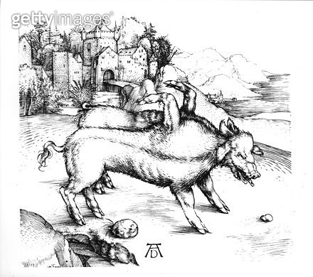 <b>Title</b> : Monstrous Pig (engraving) (b&w photo)<br><b>Medium</b> : engraving<br><b>Location</b> : Private Collection<br> - gettyimageskorea