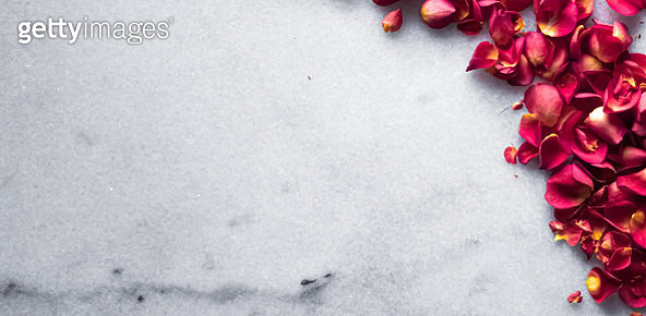 Close-up of red roses on table - gettyimageskorea