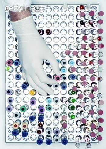 Scientist's hand choosing test tube in test tube rack, overhead view - gettyimageskorea