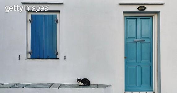 Cat Sitting Under Window Of House - gettyimageskorea