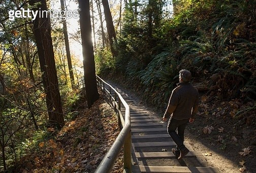 The sun is illuminating the steps and the man in the forest - gettyimageskorea
