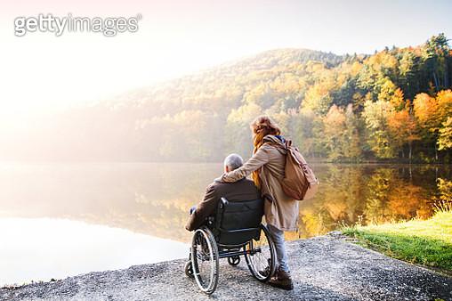 Senior Couple With Wheelchair In Autumn Nature. - gettyimageskorea