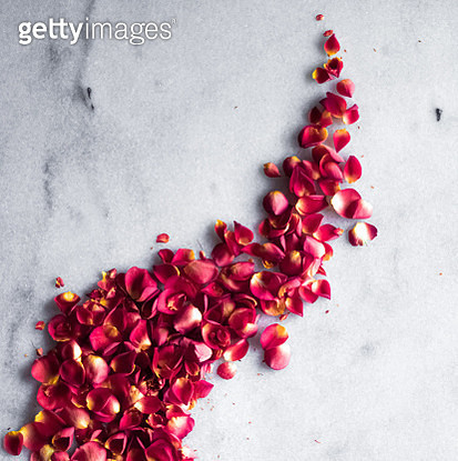 High angle view of petals on marble - gettyimageskorea