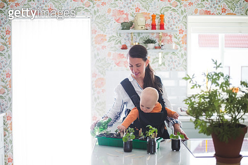 Working mother and daughter gardening in kitchen at home - gettyimageskorea
