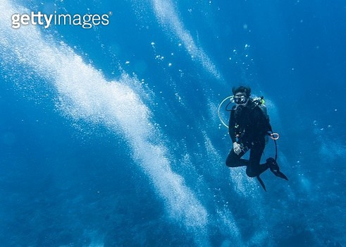 diver into the blue at Similan Islands - gettyimageskorea