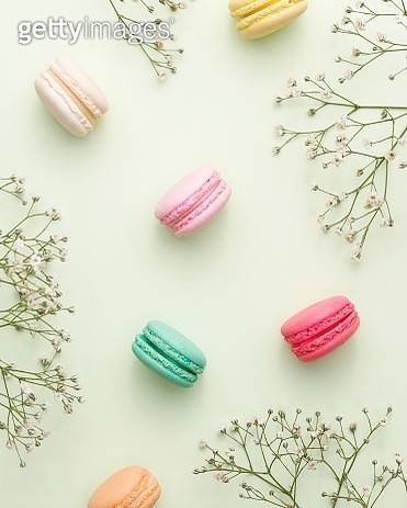 Directly Above Shot Of Macaroons And Plants On White Background - gettyimageskorea