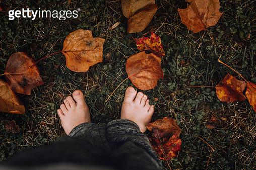 Low Section Of Boy By Fallen Leaves On Field - gettyimageskorea