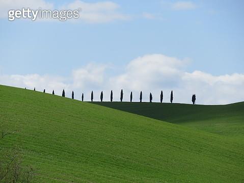 View Of Field Against Sky - gettyimageskorea