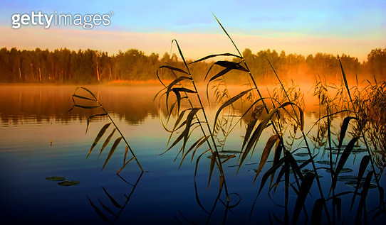 Early morning by the lake - gettyimageskorea