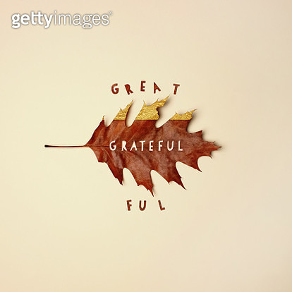 Fall leaf with text cutout reading grateful - gettyimageskorea