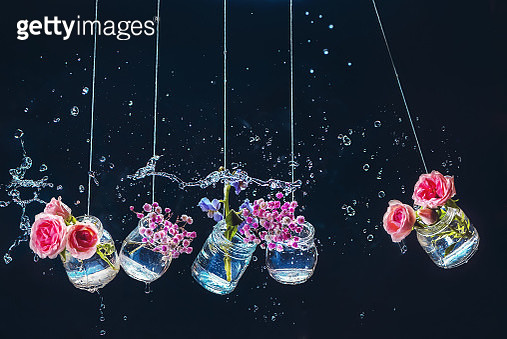 An assortment of flowers in a pendulum of Newton's cradle. Jars and bottles with roses on a dark background with water drops and splashes. - gettyimageskorea