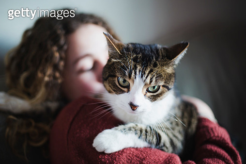 Young woman with her tabby cat - gettyimageskorea
