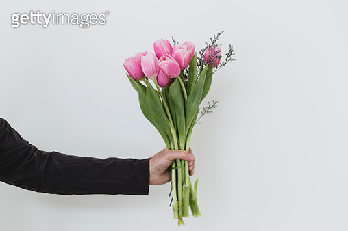 A man holding a bunch of pink tulips against a light blue wall - gettyimageskorea