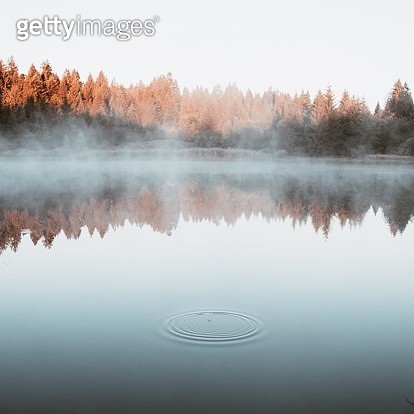 Reflection Of Trees In Lake Against Sky - gettyimageskorea