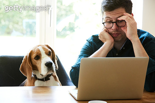 portrait of a mature adult man sitting at the table with his dog beside him working on a laptop - gettyimageskorea