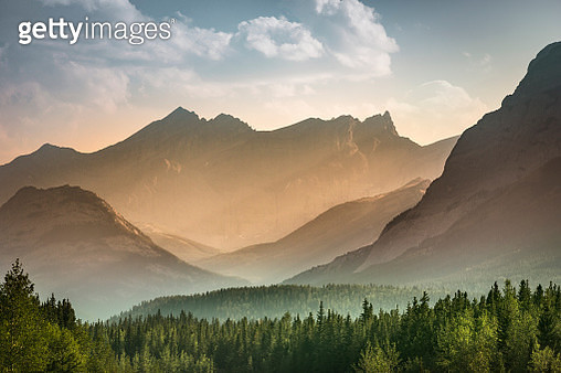 Mist rises over the forest in Banff National Park Alberta Canada - gettyimageskorea