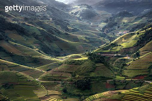 Top view (Mu cang chai) - gettyimageskorea