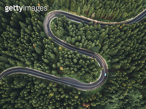 Aerial View Of Winding Road During Amidst Trees - gettyimageskorea