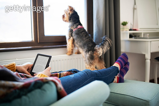 Woman Reading E-Book At Home. - gettyimageskorea