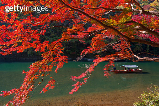Japanese dragon temple scenery - gettyimageskorea