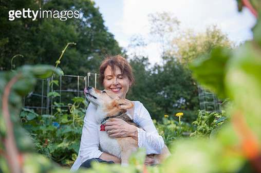 Smiling Adult Woman Hugging Corgi Dog Outdoors in the Garden - gettyimageskorea