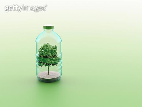 tree in a plastic bottle - gettyimageskorea