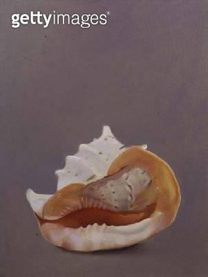<b>Title</b> : Shell (oil on canvas)<br><b>Medium</b> : oil on canvas<br><b>Location</b> : Private Collection<br> - gettyimageskorea