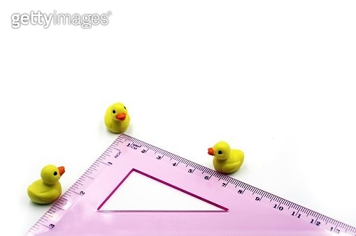 The space between three duck figurines measured by a ruler. - gettyimageskorea